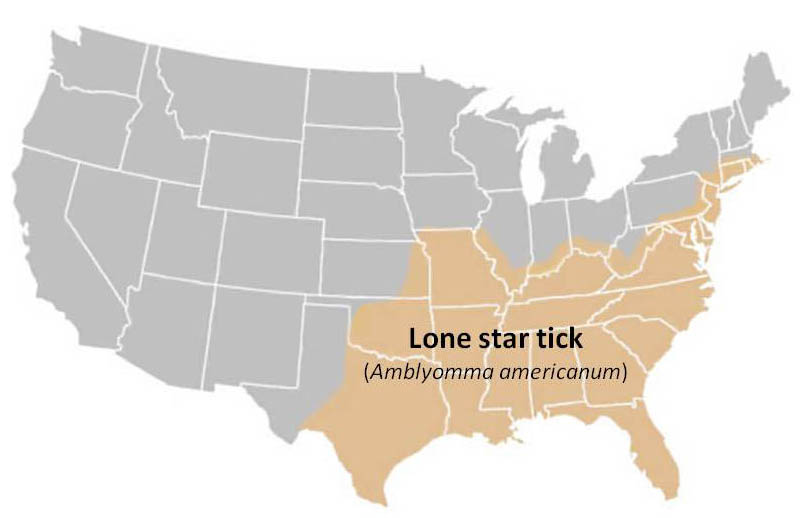 Lone Star Tick The TickApp For Texas And The Southern Region - Tick us map